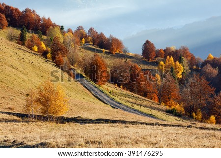 Rural road in autumn misty mountain, colorful trees on slope and sunbeam over it. - stock photo