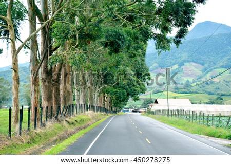 Rural road in Cerro Punta, Chiriqui Province in the highlands of Panama - stock photo