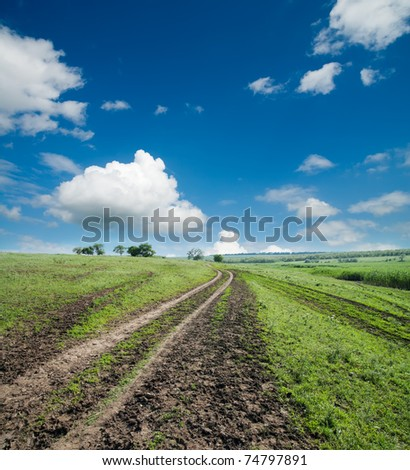 rural road in green grass under cloudy sky - stock photo
