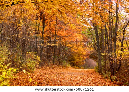 Rural road in Michigan in autumn time - stock photo