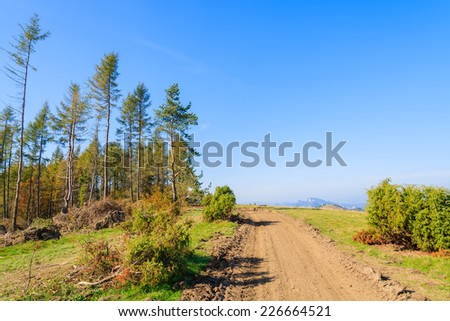 Rural road in Pieniny Mountains in autumn season, Poland