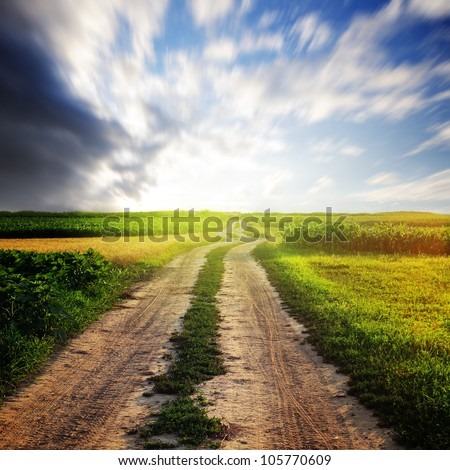Rural road in the field and sunny sky - stock photo