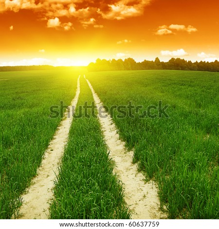 Rural road in the field and sunset. - stock photo