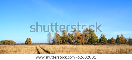 rural road on autumn field