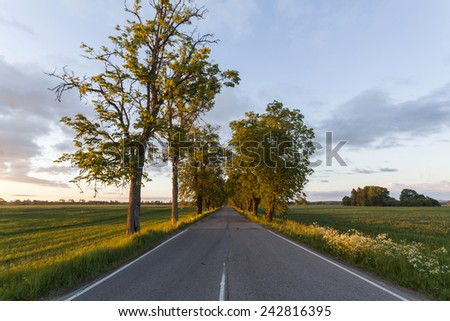 Rural road on country side. Kurzeme, Latvia.