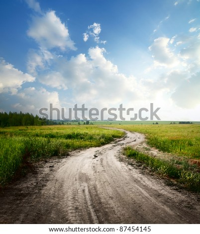 Rural road through fields with green herbs and blue sky with clouds - stock photo