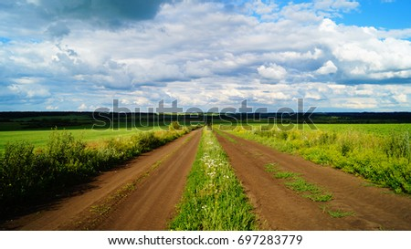Rural road through the meadow, wallpaper