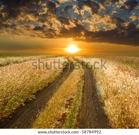 Rural road to sunset in steppe - stock photo