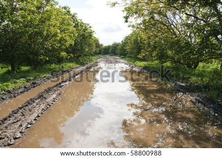 rural road with big puddle - stock photo