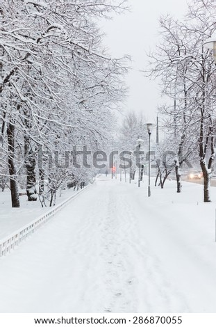 rural road with lanterns in the snow at day - stock photo