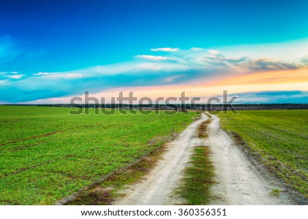 Rural sandy road in green wheat field. Spring season. Meadow and pathway, sunset, sunrise time.