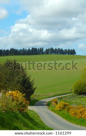 Rural Scene - stock photo