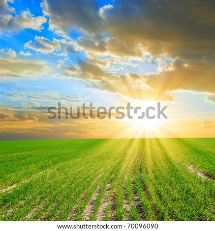 rural scene at the evening - stock photo