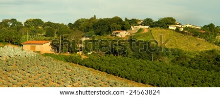 Rural scene found in the country side of Sao Paulo, Brazil - stock photo