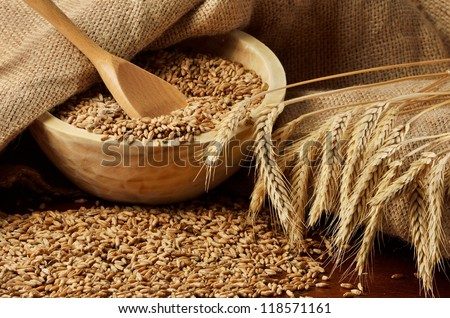 Rural scene with grains and ears of wheat - stock photo