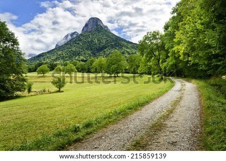Rural scene with road, meadow, trees and mountains