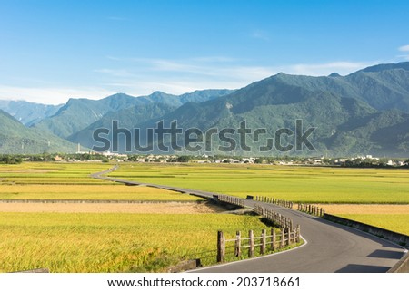Rural scenery of paddy farm and country road in Chishang Township, Taitung County, Taiwan, Asia. - stock photo