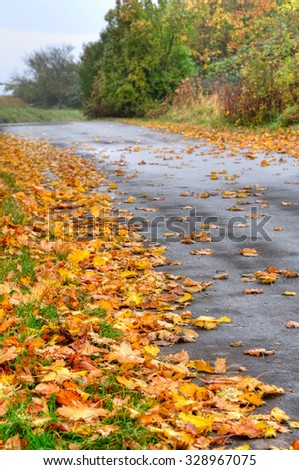 Rural side road covered with autumn leaves on a damp day; Caution: Danger of slipping - stock photo