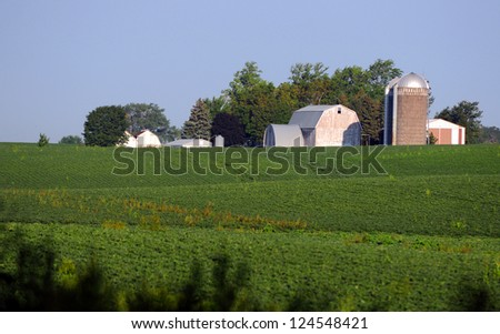 rural soybean farm in the midwest - stock photo