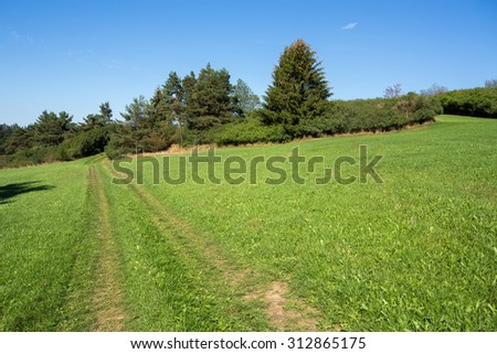 rural summer landscape in czech Republic - region Vysocina