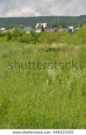 Rural summer landscape. The vertical arrangement.  Field, overgrown with grass and bushes. Roofs of houses and wooded hill can be seen in the background. - stock photo