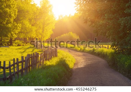 Rural Sweden summer sunny landscape with road, green trees and wooden fence. Adventure scandinavian hipster concept - stock photo
