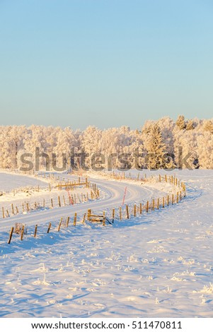 Rural winter landscape with a dirt road curve