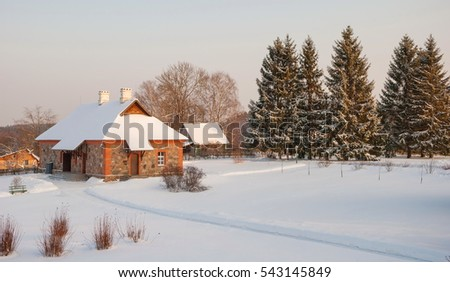 Rural winter landscape with house and fir alleys