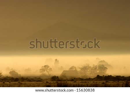 Rural winter landscape with mist and trees, early morning, South Africa - stock photo