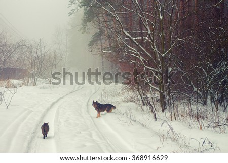 Rural winter snowy landscape - stock photo