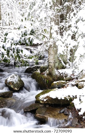 Rushing Mountain Stream, Winter, Monongahela National Forest, West Virginia, USA