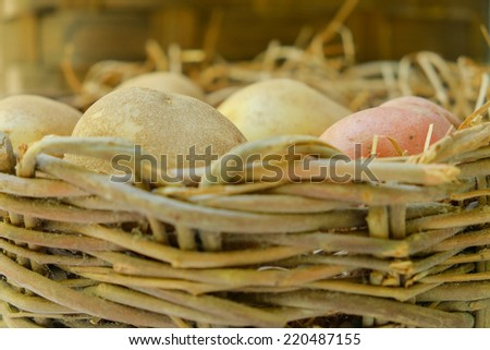 Russet and red potatoes in a wicker basket - stock photo