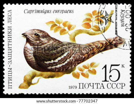 RUSSIA - CIRCA 1979 : A stamp printed by Russia shows bird an Caprimulgus europaeus from the series Birds - a protectors wood, circa 1979