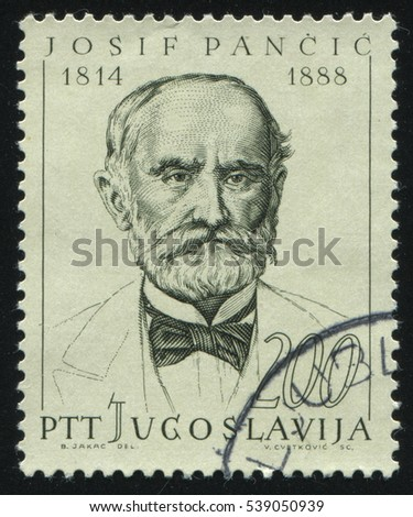 RUSSIA KALININGRAD,12 NOVEMBER 2016: stamp printed by Yugoslavia, shows the portrait of Josif Pancic, circa 1965