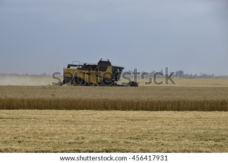 Russia, Temryuk - 01 July 2016: Kombain collects on the wheat crop. Agricultural machinery in the field. Grain harvest.