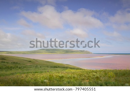 Russia, the Republic of Crimea. Dawn on the pink Lake Opuk with blossoming shores in the spring