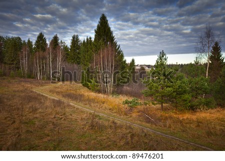 Russian autumn landscape with mixed forest