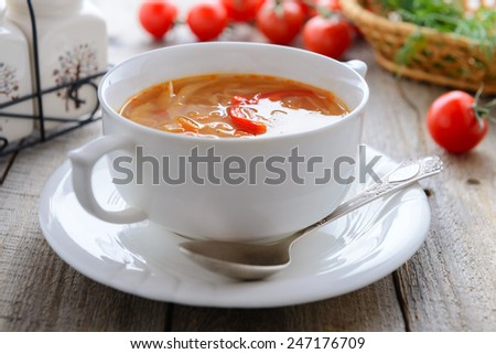 Russian cuisine - cabbage soup (shchi) - stock photo