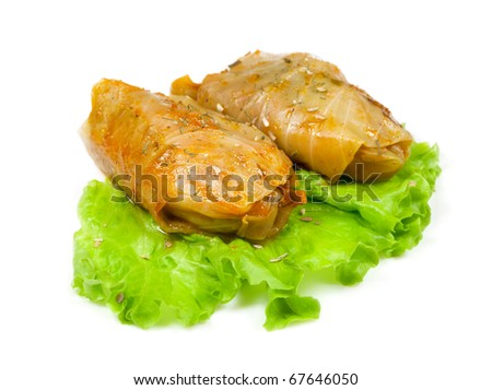 Russian golobets of cabbage and minced meat on green salad leaf - stock photo