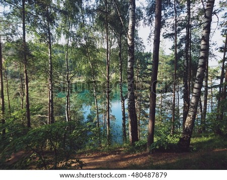 Russian landscape of the green forest on the hill and big Lake with blue water. Summer nature.