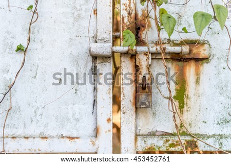 Rusted metal geate with lock and grass - stock photo