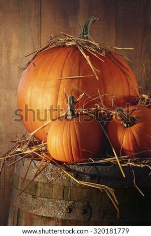 Rustic autumn still life with pumpkins on barrel - stock photo