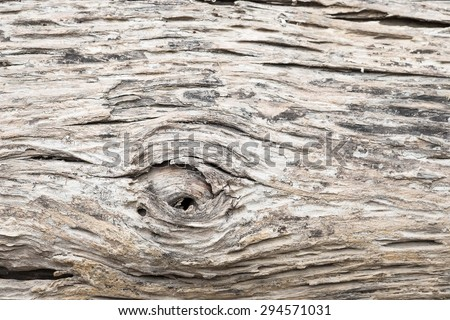 Rustic background of very rough textured weathered wooden planks with knots in a horizontal parallel pattern - stock photo