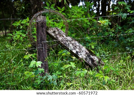 Rustic barbed wire fence in Costa Rican cloud forest