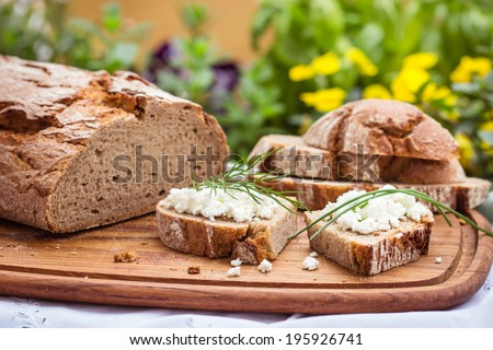Rustic bread with cottage cheese, for breakfast or snack. Selective focus. - stock photo