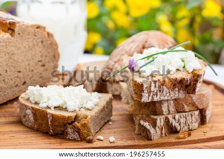 rustic bread with cottage cheese, for breakfast, picnic or snack. Selective focus. - stock photo