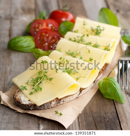 Rustic cheese bread - stock photo