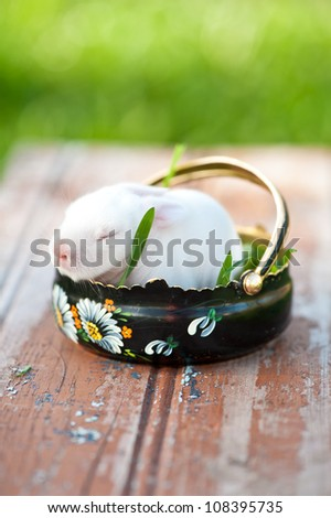 Rustic flowerpot with a newborn easter rabbit in it. - stock photo
