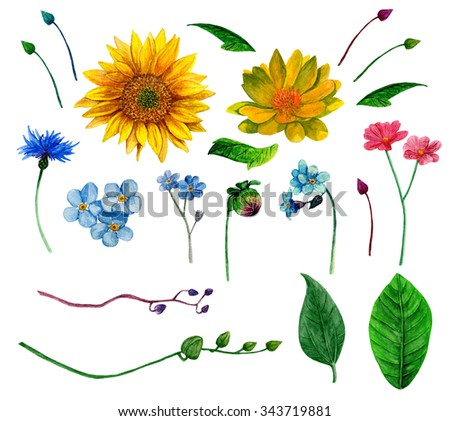 Rustic Flowers Clipart Watercolor Country Floral