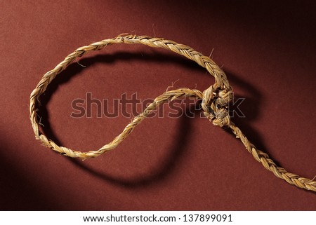 rustic lasso on brown background - stock photo